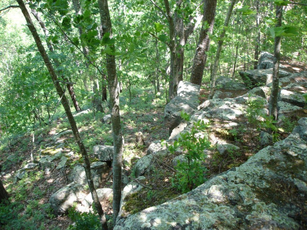 Lichen Covered Granite at Hawn State Park